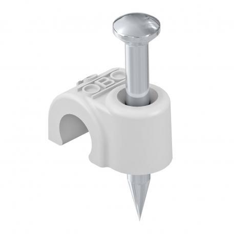 ISO-Nagel-Clip Typ 2012, lichtgrau